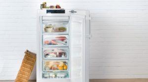 Может ли холодильник работать на морозе зимой при минусовой температуре