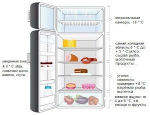 Где самое холодное место в холодильнике: однокамерном и двухкамерном