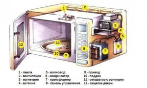Микроволновка: принцип работы, устройство, интересные факты