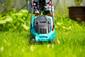 Стрижка газона своими руками: советы по первой и последующих стрижек газонной травы с использованием качественной газонокосилки