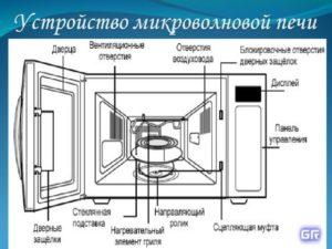Принцип работы микроволновой печи: 6 основных элементов