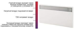 Чем отличается конвектор от радиатора: преимущества и недостатки