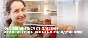 Как избавиться от плесени в холодильнике и убрать запах?
