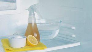Химия и народные средства против грибка и неприятного запаха в холодильнике