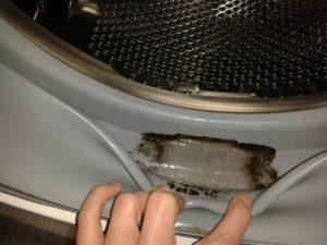 Как очистить стиральную машину от грязи
