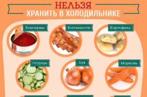 Как правильно хранить продукты в холодильнике какие нельзя а какие можно